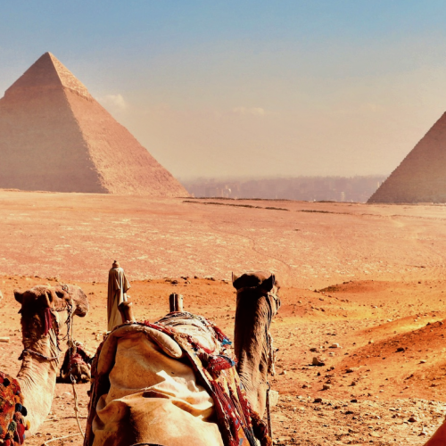 Rasori Expeditions - Egypt