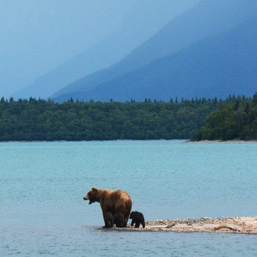 Rasori Expeditions - Alaska